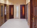 Обзор межкомнатных дверей: материал, конструкция и дизайн