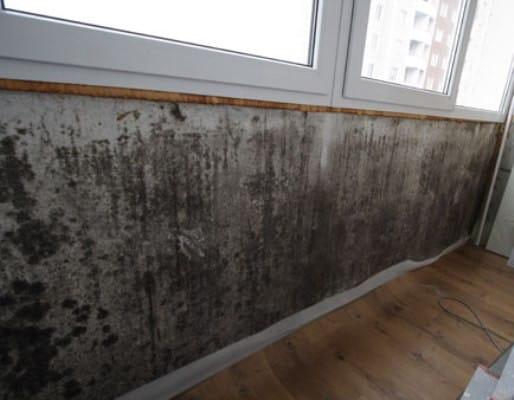 Так выглядит балкон пораженный черной плесенью