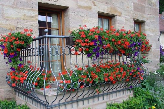 Любой балкон цветы сделают особенным